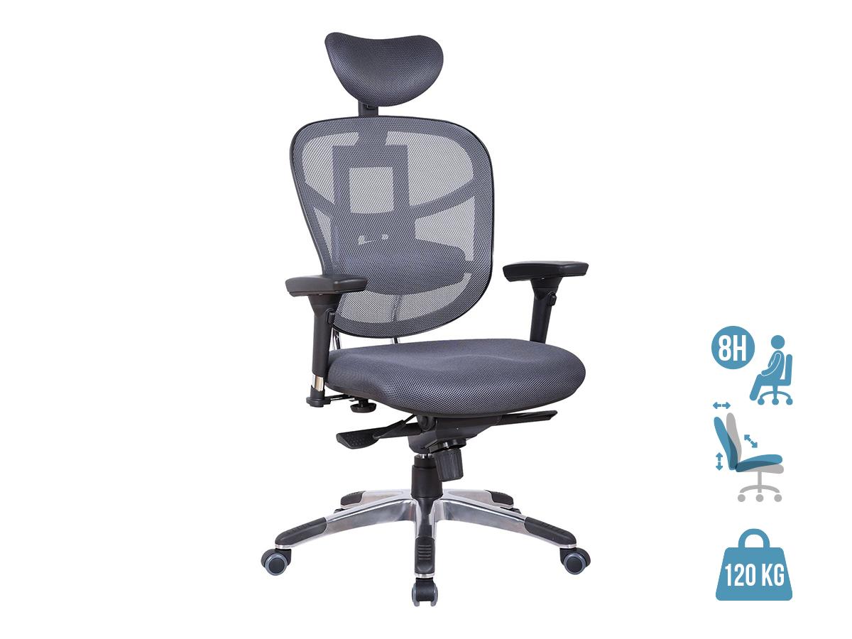 Fauteuil de bureau ergonomique TECKNET - accoudoirs réglables - appuie-tête réglable - Gris