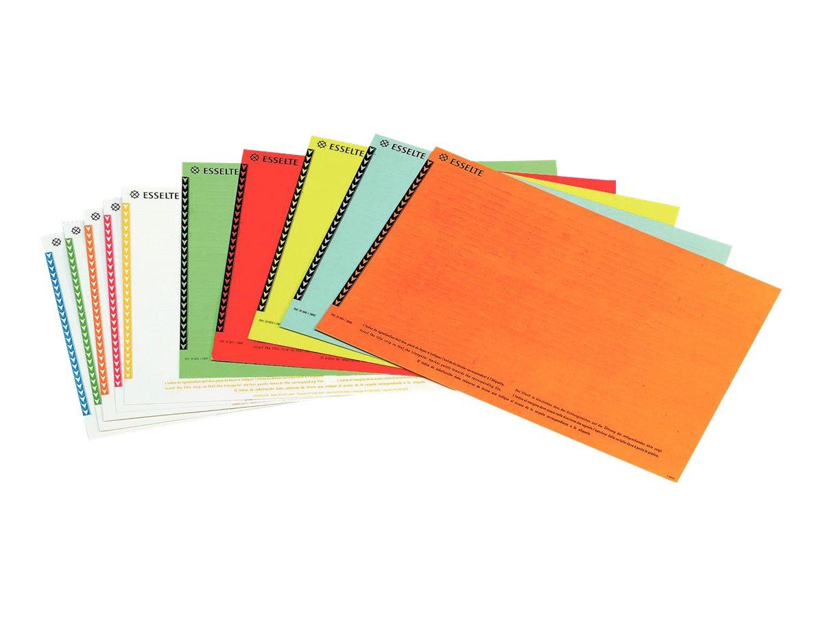 Esselte Orgarex - 10 Étiquettes pour dossiers suspendus armoires - coloris assortis