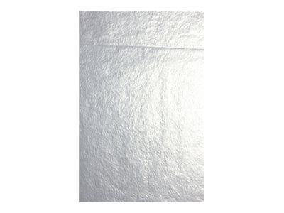 Clairefontaine - 4 feuilles pliées de papier de soie - 50 x 75 cm - argent métallisé