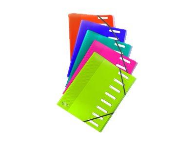 Oxford School Life - Trieur polypro 12 positions - disponible dans différentes couleurs