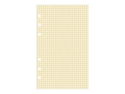 Exacompta Exatime 17 - Recharge pour organiseur - bloc quadrillé ivoire - 10,5 x 17,2 cm