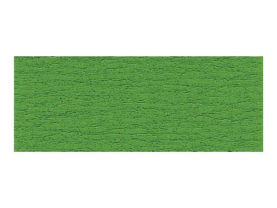 Clairefontaine Premium - Papier crépon - Rouleau 50 cm x 2,5 m - 40 g/m² - vert
