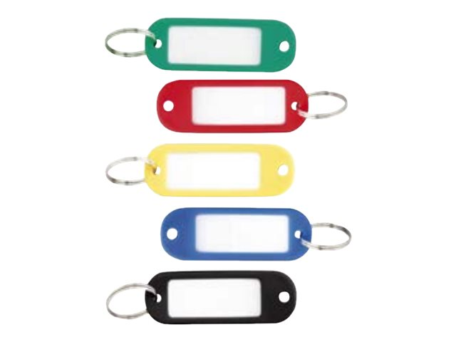 Sign - 100 Porte-clés - 56 x 22 mm - plastique - couleurs assorties