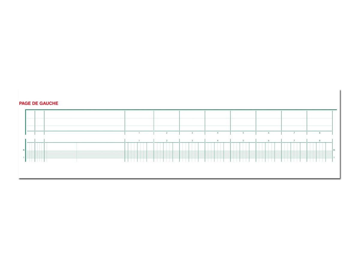 Exacompta - Piqûre tête paresseuse - 20 colonnes sur 2 pages - 27 x 32 cm