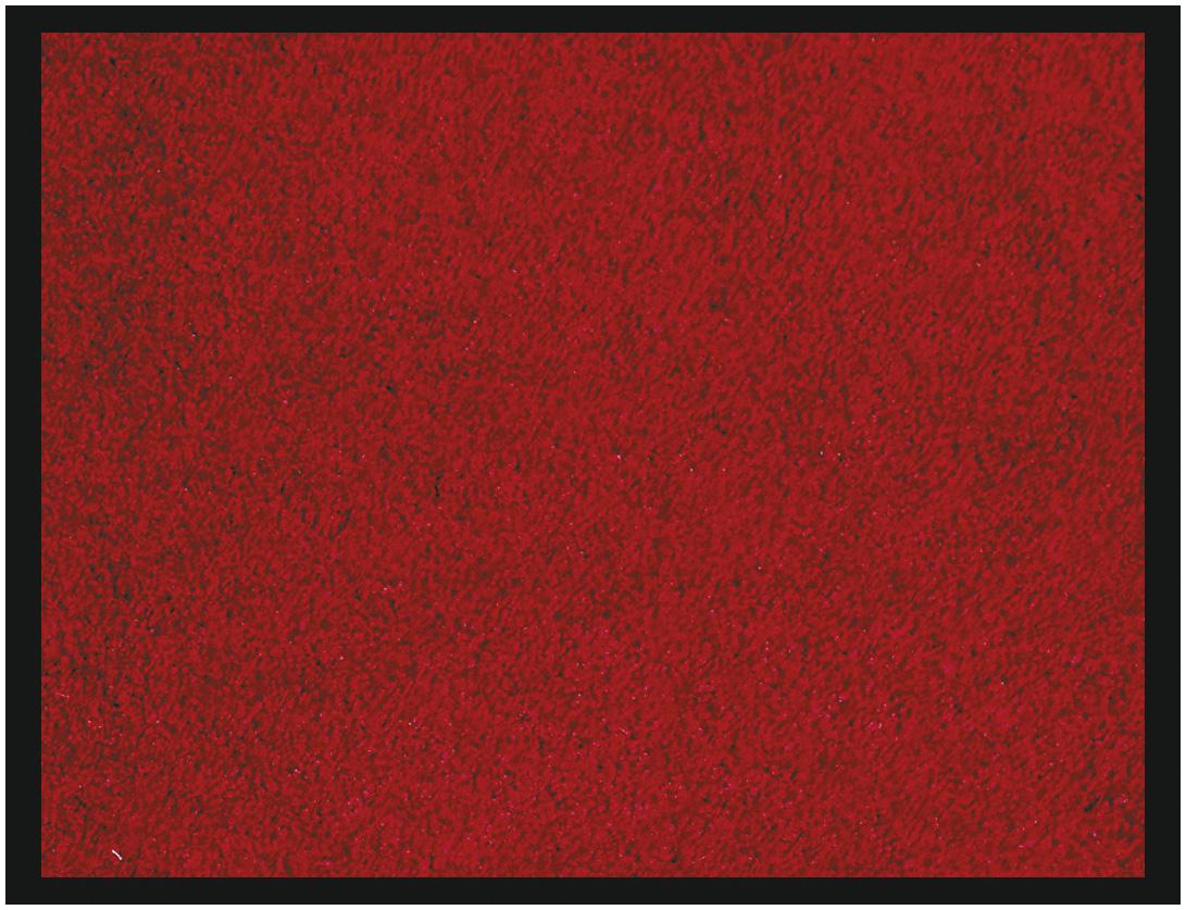 Tapis de sol absorbant RAINBOW - 40 x 60 cm - en polyamide - rouge