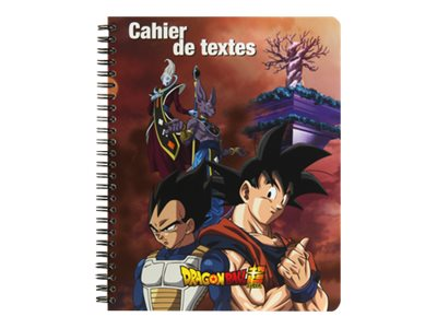 Dragon Ball - Cahier A4 - 96 pages - grands carreaux - Clairefontaine