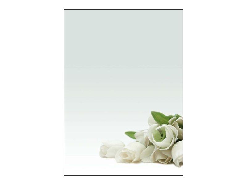 DECAdry Multipurpose - Papier illustré - 20 feuilles - motif fleur blanche