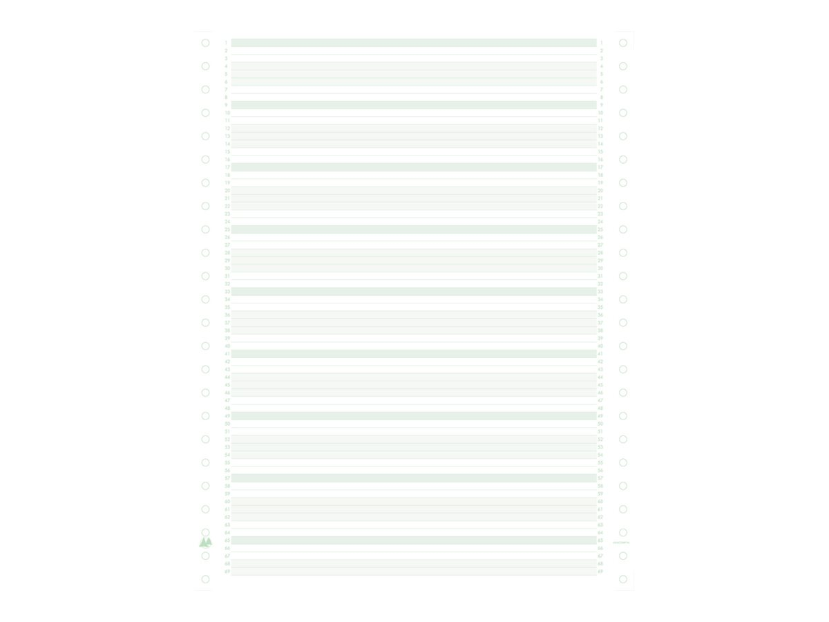 Exacompta - Papier listing zoné vert/bistre/bleu - 1000 feuilles 380 mm x 11