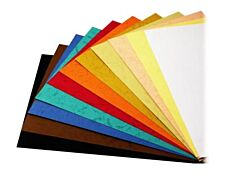 DSB - 100 couvertures à reliure A4 (21 x 29,7 cm) - carton grain cuir  230 g/m² - blanc