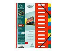 Exacompta Harmonika - Trieur à fenêtres 24 positions - disponible dans différentes couleurs