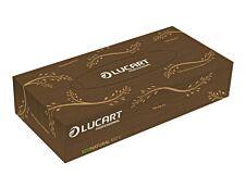 Lucart Professional EcoNatural - Boite distributrice de mouchoirs - 100 feuilles