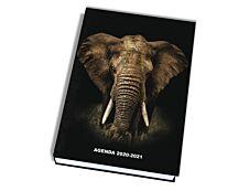 Wild Animaux - Agenda assortis - 1 jour par page - 12 x 17 cm - Kid'abord