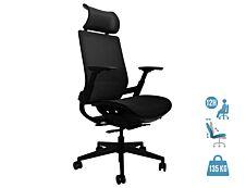 Fauteuil de bureau ergonomique WALLACE - accoudoirs réglables - appui-tête réglable - Noir