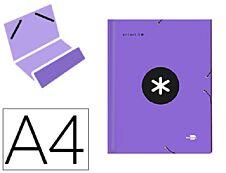 Antartik - Trieur 12 positions - A4 - violet