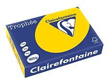 Clairefontaine Trophée - Papier couleur - A4 (210 x 297 mm) - 160 g/m² - 250 feuilles - bouton d'or