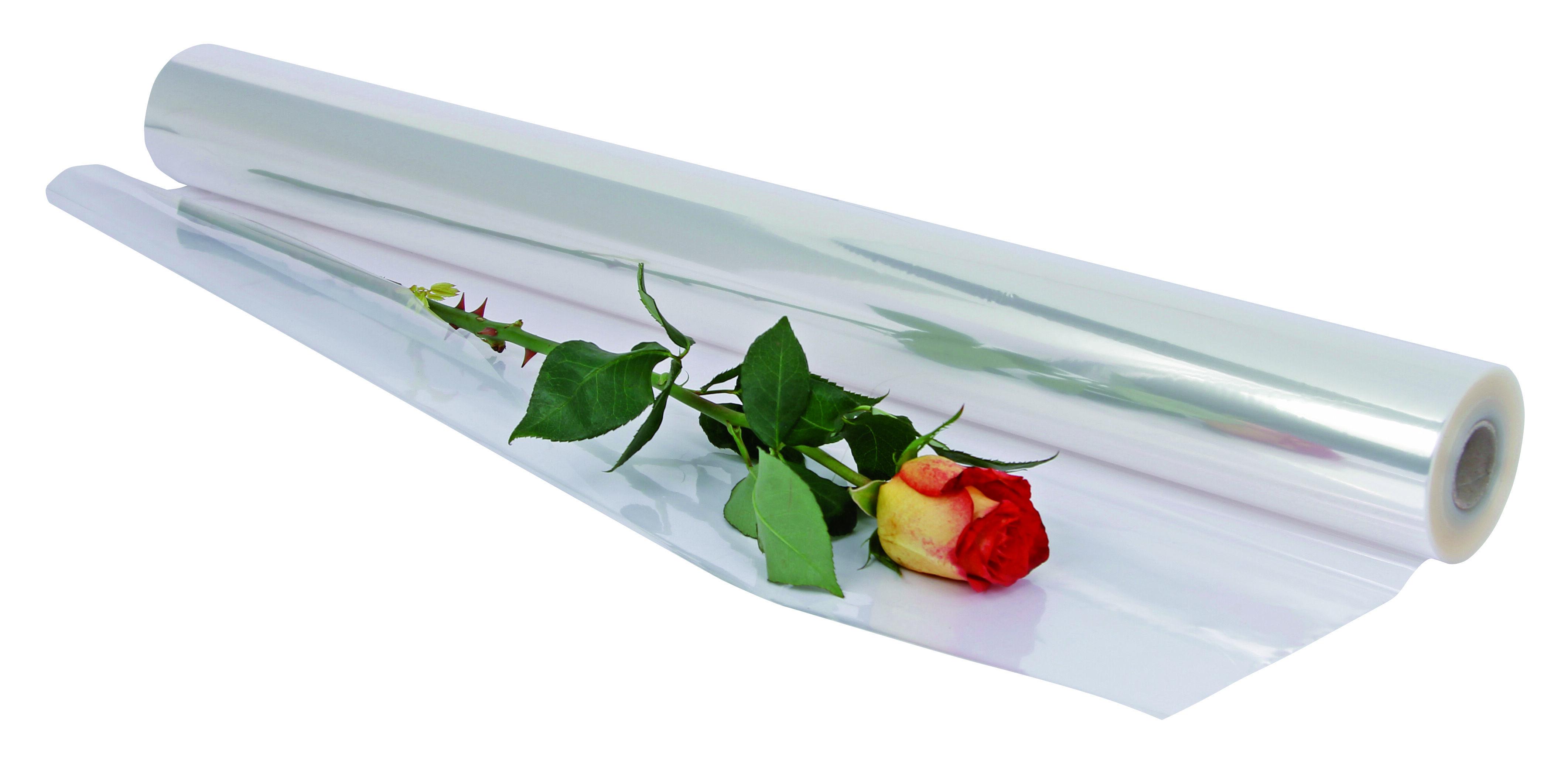 Logistipack - Papier cadeau - film fleuriste 80 cm x 120 m - 30 microns