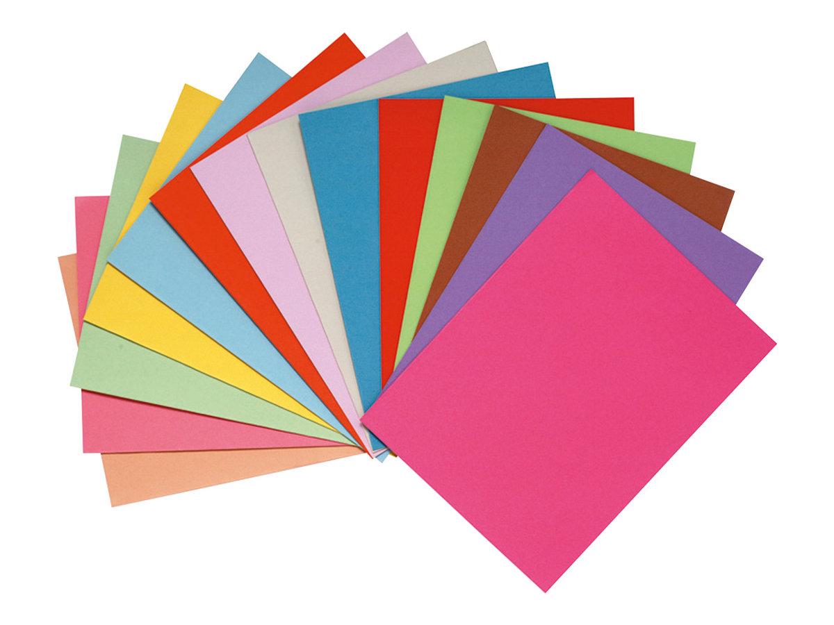 Exacompta Forever Foldyne - 100 Chemises - 220 gr - couleurs assorties
