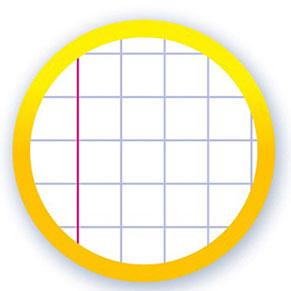 Quadrillé 5x5 + marge rouge