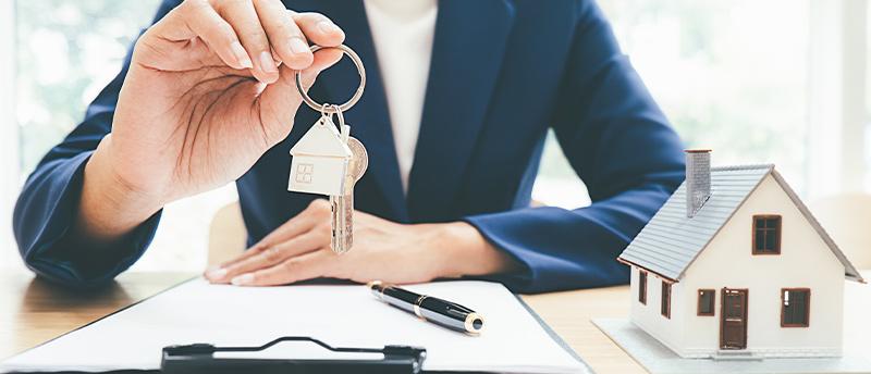 Pour les professionnels du bâtiment et de l'immobilier